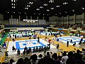 Karate Competition - The 73rd National Sports Festival.jpg