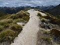 Kepler Track, New Zealand (61).JPG