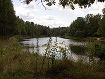 Kerjenets-2005-08-21.jpg