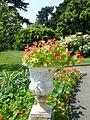 Kew Gardens P1170613.JPG
