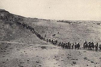 الإبادة الجماعية للأرمن - ويكيبيديا