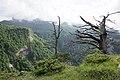 Khodz river headwaters, Верховья реки Ходзь, каньон, горы Западного Кавказа.jpg