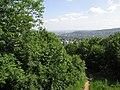 Kilátás a városra az Árpád-kilátóról.jpg