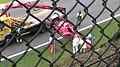 Kimi Raikkonen 2008 Belgium crash-02.jpg