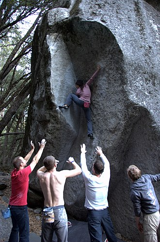 Lynn Hill - Hill made the first female ascent of Yosemite's King Cobra in 1998. (Others pictured)