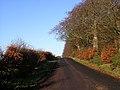 Kirkfieldbank Road - geograph.org.uk - 284145.jpg