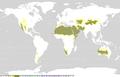 Koppen classification worldmap B.png