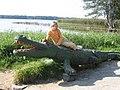 Krokodyl z j. Białego - panoramio.jpg