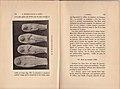 La Nécropole Punique de Douïmès (a Carthage) fouilles de 1895 et 1896 65.jpg