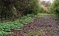 Lagan Lands East, Belfast (3) - geograph.org.uk - 1574818.jpg