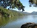Lagoa do Peri - panoramio - Jeferson Felix (5).jpg