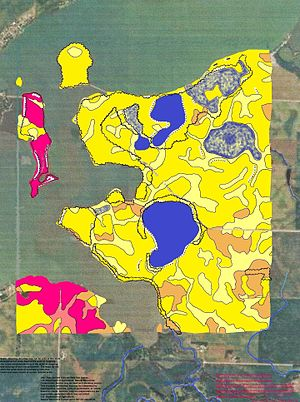 Murray County, Minnesota - Soils of Lake Shetek State Park area