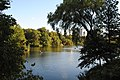 Lake at Central Park of New York - NYC - USA - panoramio.jpg