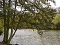 Lake on Nottingham University Campus - geograph.org.uk - 1044974.jpg