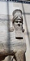 Lamassu du palais de Khorsabad, Musée du Louvre.jpg