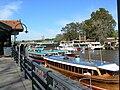 Lanchas colectivo y catamaranes en río Tigre.JPG