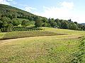 Landscape of Bjelusa - 7408.CR3.jpg