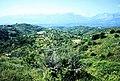 Landschaft auf der Peloponnes.jpg