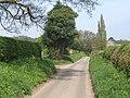 Lane passing Gifford's Hall Park - geograph.org.uk - 1265479.jpg