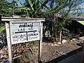 Lat Yai, Mueang Samut Songkhram District, Samut Songkhram 75000, Thailand - panoramio (2).jpg