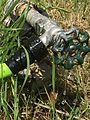 Lawn water hose sprinkler conservation (3).jpg