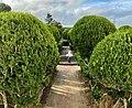 Lead Me Down A Garden Path (50812508373).jpg