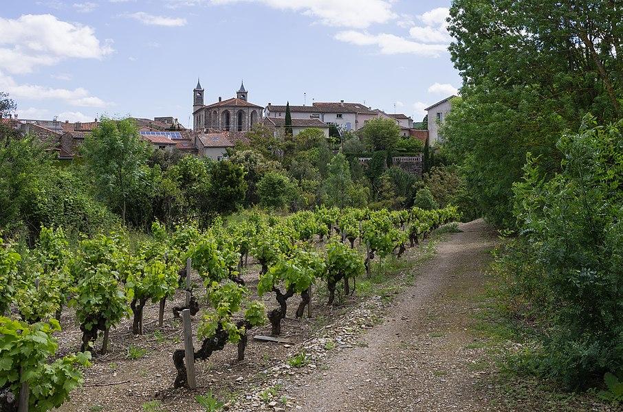 Commune of Les Aires, Hérault, France. Haut-Languedoc Regional Natural Park.