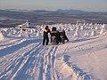 Levi, Kittila - Finland - panoramio - aristidov (4).jpg