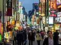 Lights of Kabukicho (41642972072).jpg