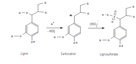 Generalized structure of lignosulfonates