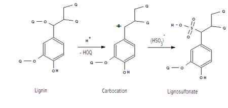 Generalized structure of lignosulfonates