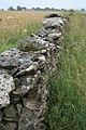 Limestone Dry Stone Wall, Near Riccal Heads - geograph.org.uk - 496685.jpg