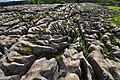 Limestone pavement at Malham Cove - geograph.org.uk - 1447165.jpg