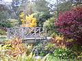 Lister Park gardens 3.JPG