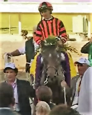Little Mike - Little Mike after winning the 2012 Breeders' Cup Turf