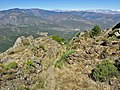 Llasseras - panoramio (1).jpg