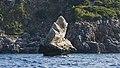 Loc. Scopello, 7, 91014 Castellammare del Golfo TP, Italy - panoramio (1).jpg