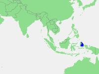 Locatie Zee van Halmahera.PNG