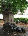 Loewenbrunnen am Marstallplatz Muenchen-2.jpg