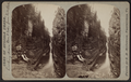Looking down Boat Ride from Table Rock, by McIntosh, R. M., b. 1823.png