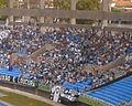 Loucos pelo Botafogo 19-01-2008.JPG