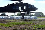 Louisiana National Guardsmen fill breaches with sandbags for wetland protection DVIDS282135.jpg
