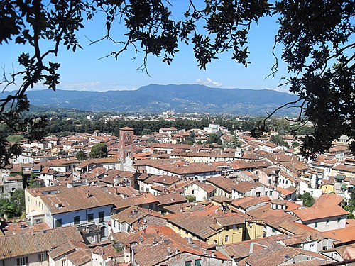 Lucca through the trees - panoramio.jpg