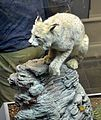 Lynx Mamalogie GLAM Musée d'histoire naturelle de Lille.jpg