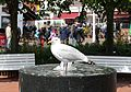 Möwe Brunnen Norderney, Kurplatz.jpg