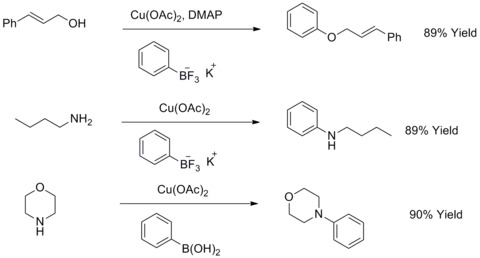 Modified Ullmann biaryl ether and biaryl amine synthesis