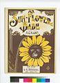 Ma sun-flower bab (NYPL Hades-609155-1257051).jpg