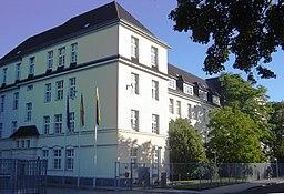 Zuckerbusch in Magdeburg