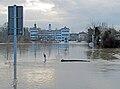 Main-hochwasser-2011-rumpenheim-18-of-028.jpg
