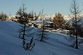Malga Castelberto, inverno.jpg